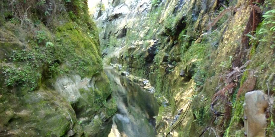 Madagascar Canyon-Environment and Sustainability