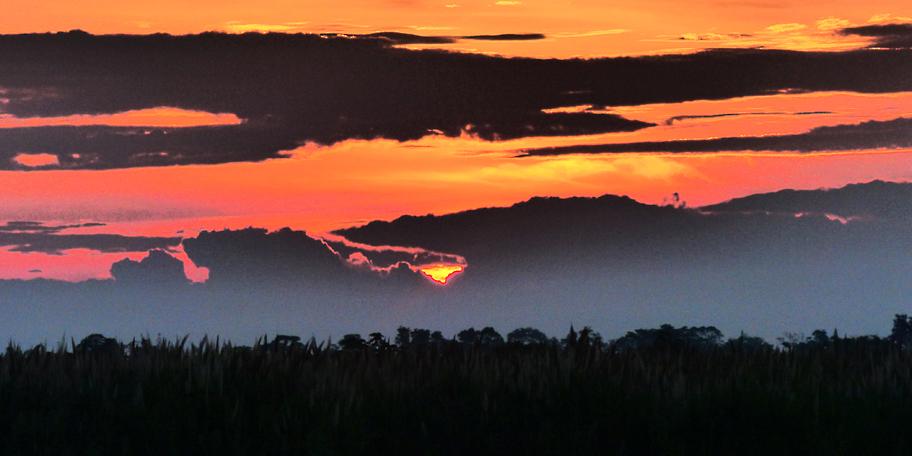 Sunrise-Environment and Sustainability